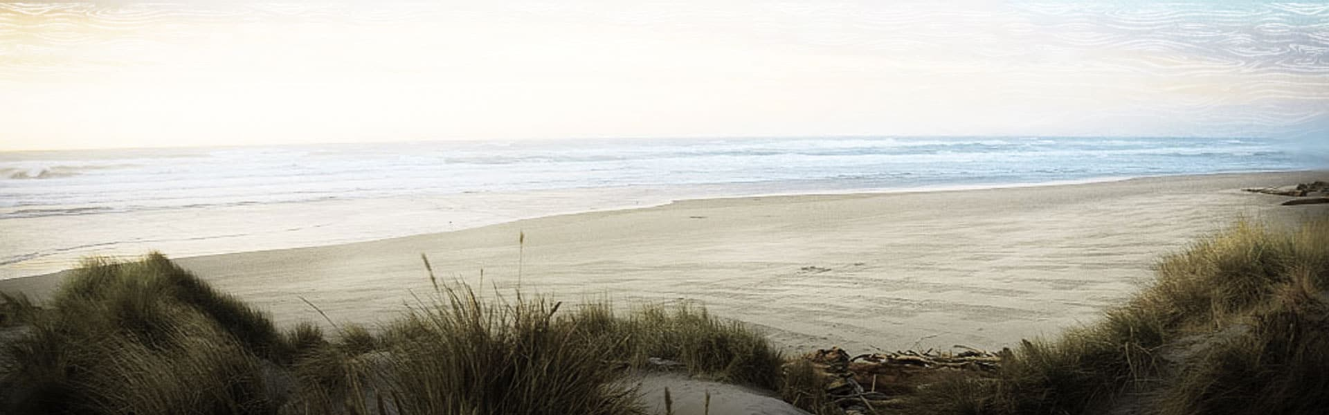 Sandy beach with grass at Coos Bay
